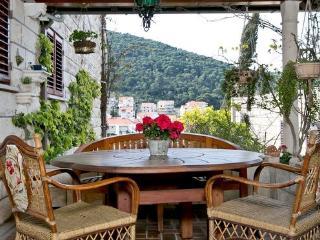 Studio apartment in Lapad Bay - Dubrovnik vacation rentals
