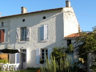 Charente Maritime: Pretty house in quiet village - Saint-Savinien vacation rentals
