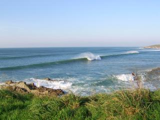 Hibiscus House, Fistral beach, Newquay - Newquay vacation rentals
