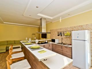 Marata 19 - Saint Petersburg vacation rentals