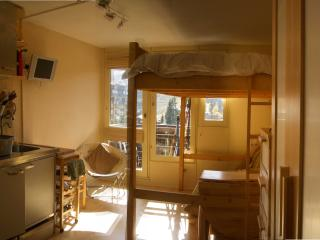 Nice Studio with Tennis Court and Television - Avoriaz vacation rentals