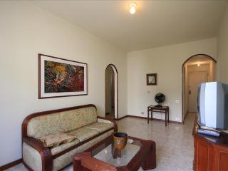 Comfortable Apartment with Television and Microwave - Rio de Janeiro vacation rentals