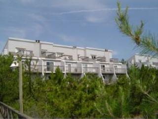 4 bedroom unit with direct ocean front views over the dunes. Boardwalk to beach - Bethany Beach vacation rentals