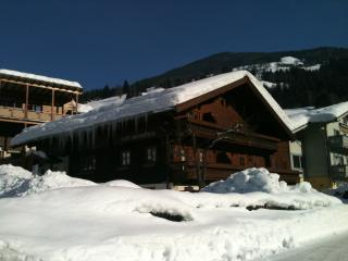 Nice Condo with Internet Access and Mountain Views - Viehhofen vacation rentals