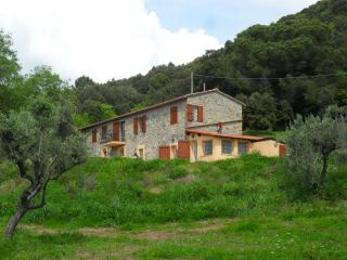 5 bedroom cottage in rural Tuscany with sea view, - Riparbella vacation rentals