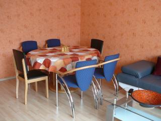 3-Zimmer Messe- und Ferienwohnung - Nuremberg vacation rentals