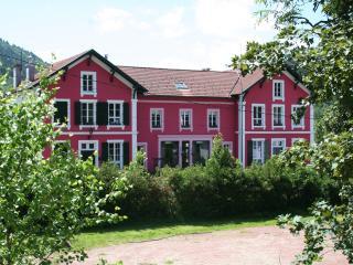 La Mirabelle - La Bresse vacation rentals