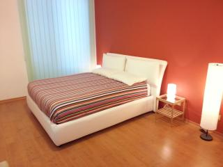 Big and modern apart St. Peter - Rome vacation rentals