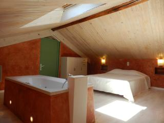 Cozy 1 bedroom Gite in Mezel with Internet Access - Mezel vacation rentals