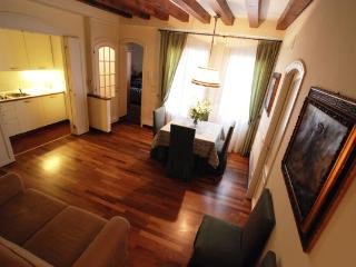 Carmini - City of Venice vacation rentals