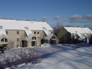 Whiffletree Condo C7 - Three bedrooms Two bathrooms Shuttle To Slopes/Ski Home - Killington vacation rentals