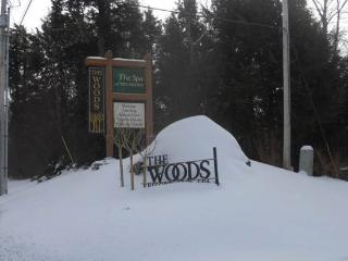 Woods Resort & Spa E7 - Two bedrooms Two and a half bathrooms Health Club Privileges - Killington vacation rentals