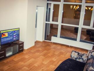 Nice Condo with Internet Access and Central Heating - Surgut vacation rentals