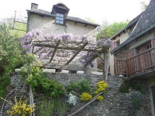 Charming Vieillevie Cottage rental with Washing Machine - Vieillevie vacation rentals