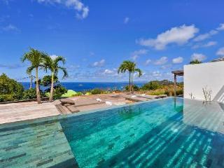 Ocean view Rock U with modern décor, serene hillside terrace & infinity pool - Lurin vacation rentals