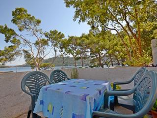 Apartments Luka - 53731-A2 - Ubli vacation rentals