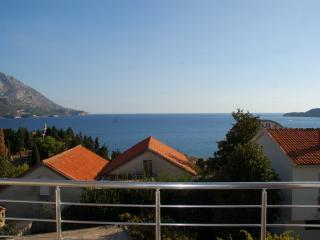 Apartments Veselin - 93261-A1 - Montenegro vacation rentals