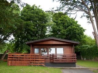 Birch Lodge, Newton Stewart, Dumfries & Galloway - Newton Stewart vacation rentals