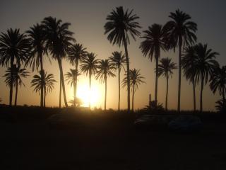 EL PARAISO - Torrevieja vacation rentals