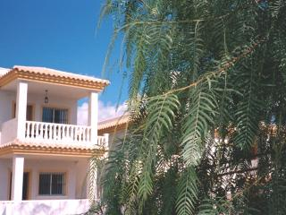 Nice 2 bedroom Condo in Castalla - Castalla vacation rentals