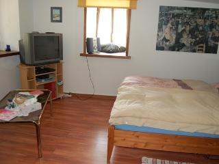 Nice Studio with Internet Access and Central Heating - Bex vacation rentals