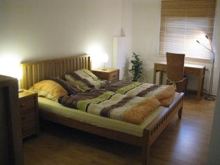 Beautiful 2 bedroom Condo in Celle - Celle vacation rentals