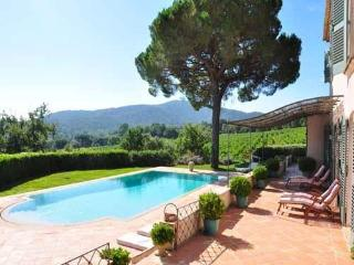 Charming Villa with Internet Access and Central Heating - Gassin vacation rentals