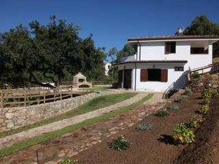 Beautiful Villa with Satellite Or Cable TV and Television - Fluminimaggiore vacation rentals