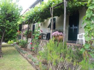 Cozy 2 bedroom House in San Giuliano Terme - San Giuliano Terme vacation rentals
