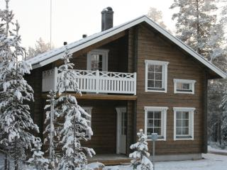 Nice Cottage with Internet Access and A/C - Levi vacation rentals