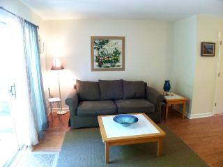 Ocean Edge Townhouse with A/C & Pool (fees apply) - HO0063 - Brewster vacation rentals