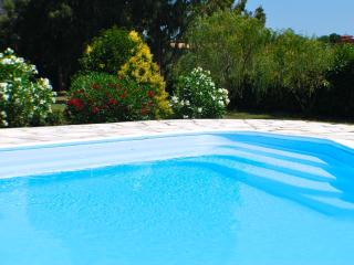 Large Lakefront Villa near Rome, private pool - Rome vacation rentals