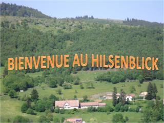Gite Appart. + Salle Belle Vue - Linthal vacation rentals