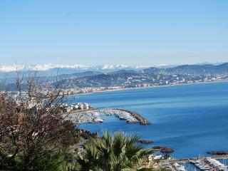 5 bedrooms villa 10 min.drive from Croisette - Cannes vacation rentals