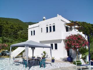 Ktima Ravanou apartment 1 in Villa Alexandra - Skopelos vacation rentals