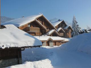 Chalet Les Trappeurs - superb alpine lodging - Les Carroz-d'Araches vacation rentals