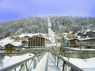 Mountain Xtra Apollo - Morzine-Avoriaz vacation rentals