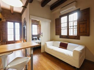 PENTHOUSE/DUPLEX TERRACE/CENTE - Barcelona vacation rentals