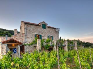Villa Wine Yard - Jelsa vacation rentals