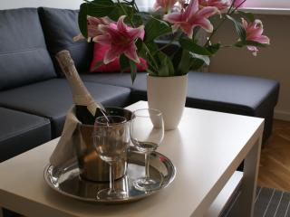 LuxApart Centrum, Wi-Fi, Central Station 500meters - Warsaw vacation rentals
