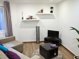 Apartment in Bilbao - Bilbao vacation rentals