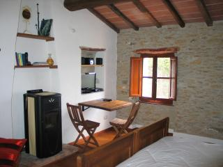 Bright House with Satellite Or Cable TV and Television - Stazzema vacation rentals