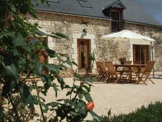 A Magnificant Farmhouses and Covered Pool - Le Lude vacation rentals