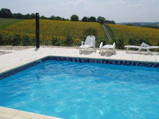Convenient 2 bedroom Montmoreau-Saint-Cybard Gite with Internet Access - Montmoreau-Saint-Cybard vacation rentals