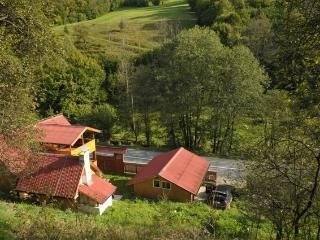 Casa di vacanza a Bucium Cerbu - Alba Iulia vacation rentals