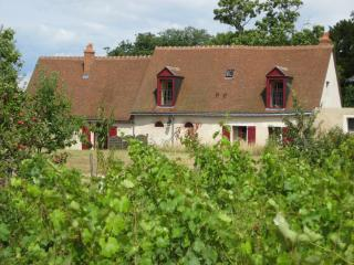 Cozy 3 bedroom Vouvray House with Internet Access - Vouvray vacation rentals