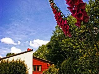 Blackmoor Red - Saltash vacation rentals