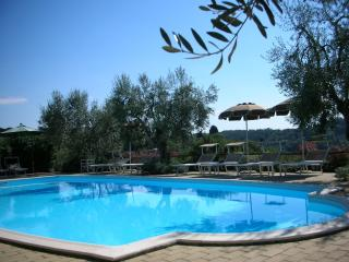 RONDINE apartment in beautiful countryside - Poggibonsi vacation rentals