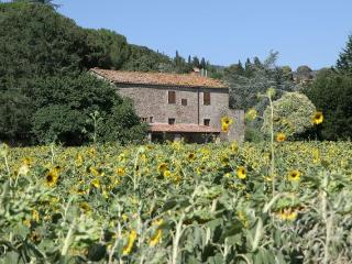Tuscany 3 bedroom villa (BFY13466) - Camucia vacation rentals