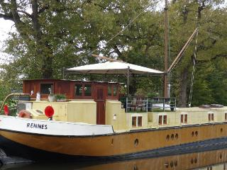 Nice Houseboat with Internet Access and A/C - Chevaigne vacation rentals